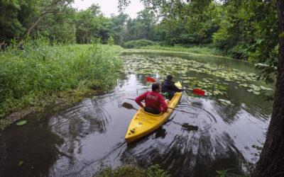 Spływ kajakowy RZEKA GRABIA – 11.07.2020